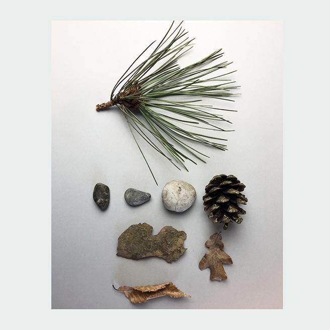 _BLAD_journal_bruggerhorn-samples